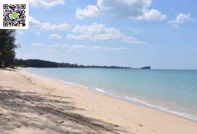 Beach Front Land For Sale 25 Rai, Bangmuong, Phang nga.