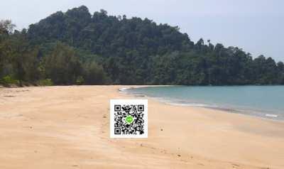 Bay and Beach Front Land For Sale 40-120 Rai, Koh Ra, Phang nga.