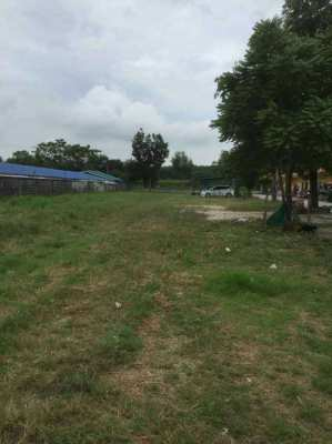7-0-0 INVESTMENT LAND WITH 35 ROOMS ON 7 RAI