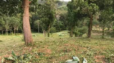 1 Rai of land for sale nearby Kokkloi