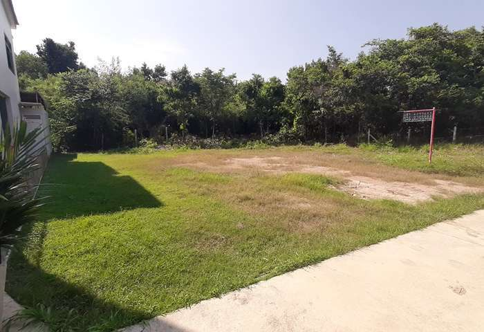 LS1057  Jomtien Land for sale 98 Sq.w