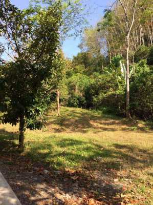 Land for sell 81.2 sq.w