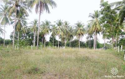 Small plot for sale Sam Roi Yot