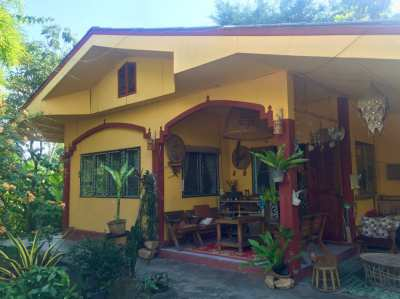 Cozy house in tropical garden in the wonderful Phrao valley