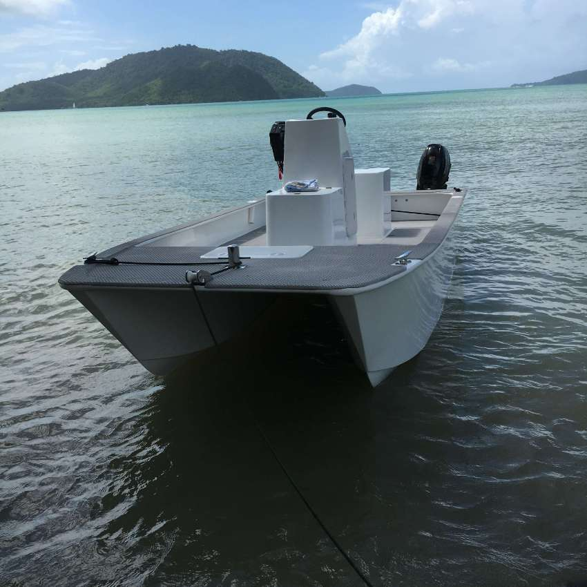Power Cat 4.5m, Twin 20hp, With Trailer