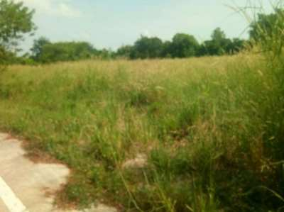 Land for sale East Pattaya, soi.Nongkrabok, cheap price.