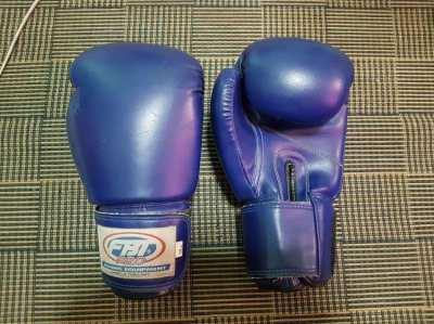 FBT Pro 12oz Boxing Gloves
