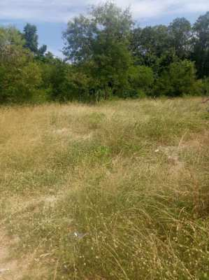Land for sale East Pattaya, Huay Yai, close to Phoenix Golf course