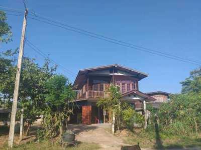 For sale house on 1 rai Kaset Sombun Chaiyaphum Thailand
