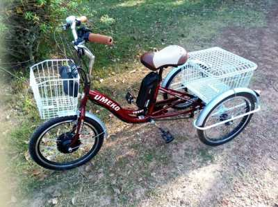 e tricycle, ebike, mtb, bycycle