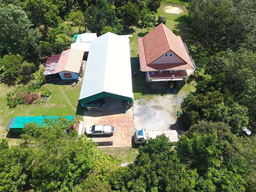8 Rai Land & House  for sale betw. Thalang and Airport