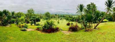 Land for sale with Doi Suthep Mountain View Chiang Mai
