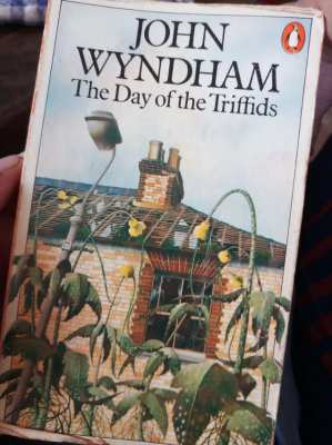 The Day of the Triffids - John Wyndham  ** free postage **