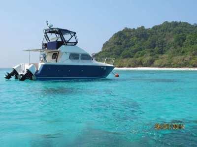 Power Catamaran for sale