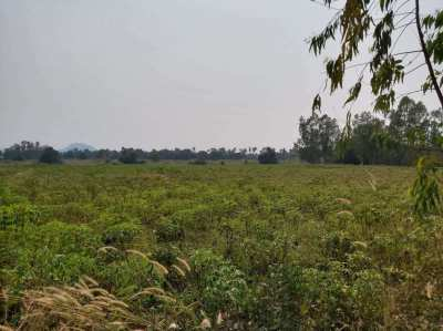 26 Rai 327 Twah Land Plot for Sale