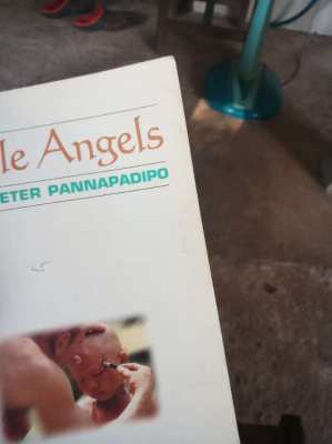 Little Angels; novice monks' real life stories  Phra Peter Pannapadipo