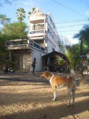 Pattaya Jomtien Beach Front Shop House