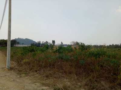 16 Rai 224 Twah Of Land For Sale, Priced @ 2.8 Mb Per Rai