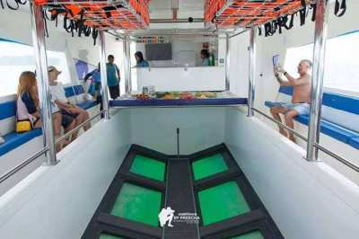 CATAMARAN 70 PASSENGERS glass bottom