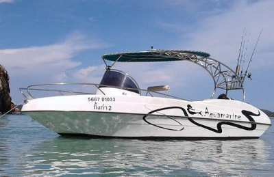 Aquamarine Sport Cruiser