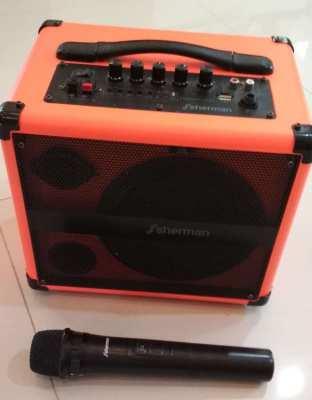 Sherman FM/MP3 player USB Karaoke