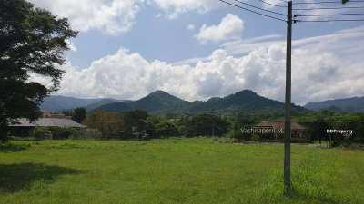 Khao Yai: Beautiful plot in the winery area - Chanot
