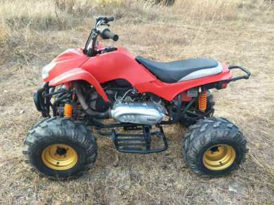ATV (Quad Bike)