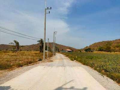 Hot! Awesome Mountain View Hidden Valley 2-3-85 Rai