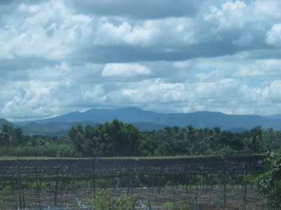 Land in the tranquil setting of the Khao Yai highlands area for sale.