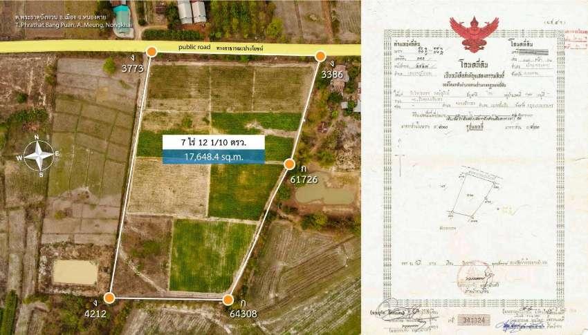 rubber farm for sale northeast Thailand - 350,000/500,000 baht per rai
