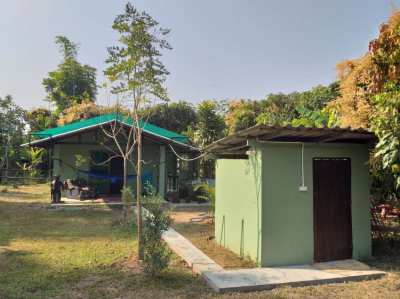 Bungalow on horse farm in phrao district chiang mai อ. พร้าว