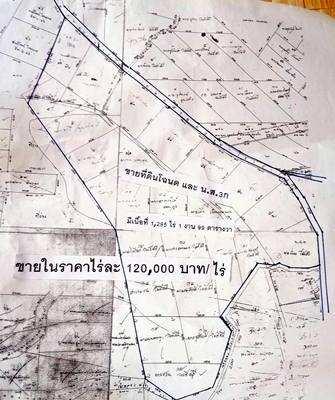 Land for sale with Pa Sak Thong garden, Chon Daen District, Phetchabun Province