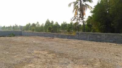 Det Udom District 1750 SQ M . With Privacy Wall .