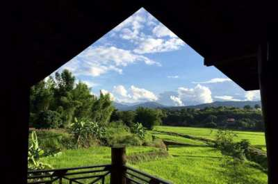 Beautiful 5 Rai of rural land in Mae Rim, Chiang Mai.