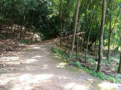 5 Rai of Land for sale at Koh Mak Noi - Phang Nga Bay.