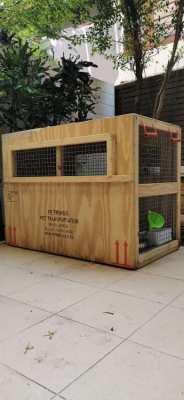 Pet Kennel/Carrier