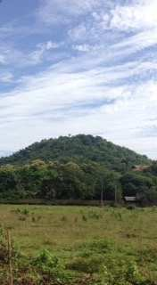 Beautiful land for sale located in Chiang Rai (just 2 kilometres away