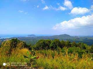For sale sea view land in Ban Thai Koh Phangan
