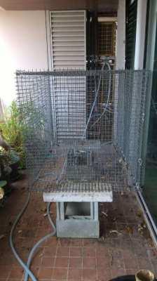 pet cage 1.5ml*1mw*1mh galvanized steel