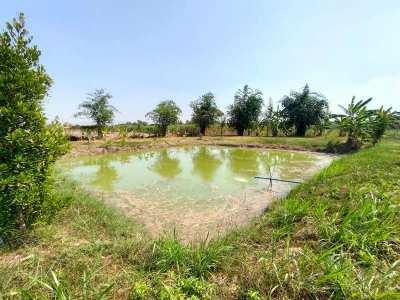 Nice Countryside 6-1-20 Rai Organic Farm