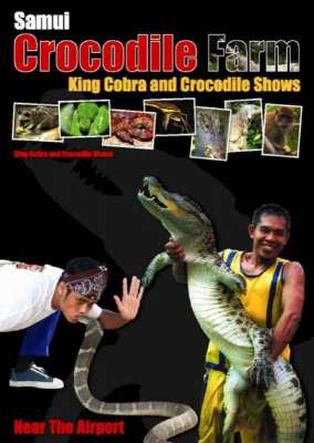 Samui Crocodiele farm