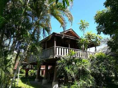 Boutique Resort - Phrao