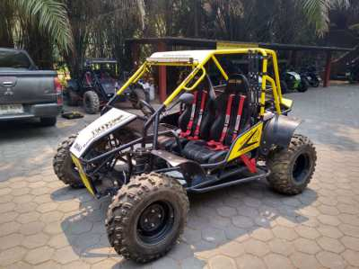 Off road buggies for sale