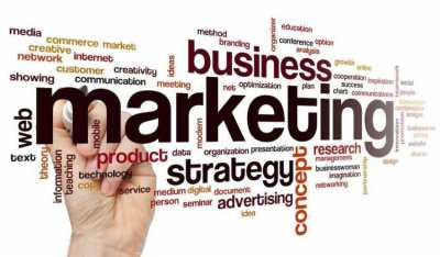 Business Marketing and Management