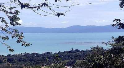 For sale 7 Rai sea view land in Maenam Koh Samui