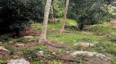 Land for sale in the center of Lamai Koh Samui - 1356 sqm