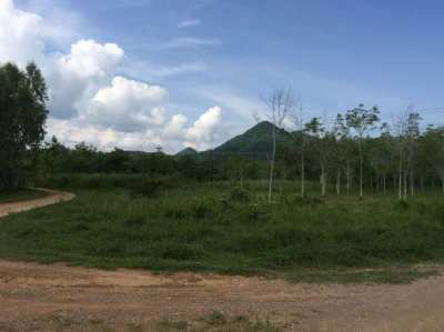 Rubber Plantation 17 Rai for Sale