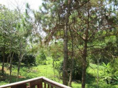 Chiang Rai, 6 min. from downtown, 2 houses on secluded 2.5 rai