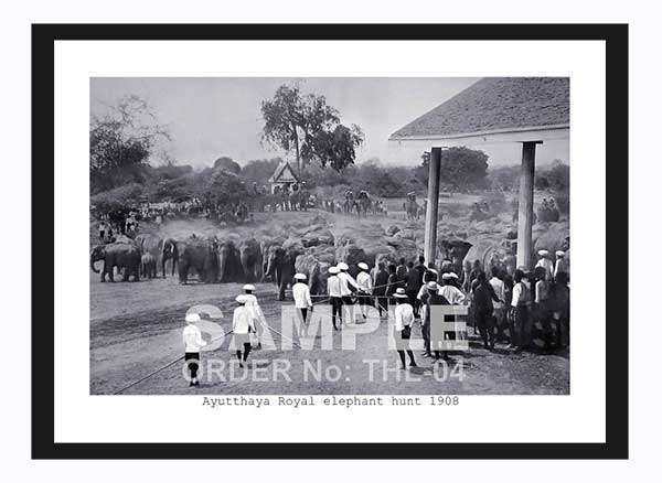 Thailand Historical  black and white Antique Rare old Photos size A4