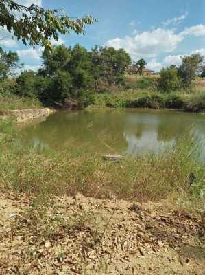 Land 11 Rai for sale price reduced
